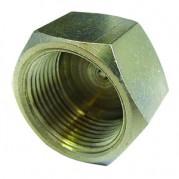 Female BSPP Cap - Nickel Plated