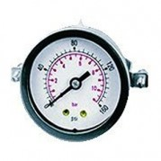 Panel Mounting Pressure Gauge - Centre Back Connection - 40mm Dial